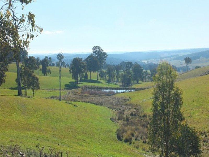 829 Redbank Road, Triangle Flat, NSW 2795