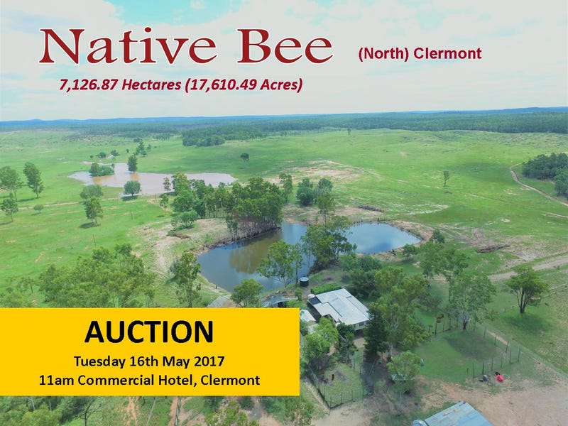 """""""Native Bee"""" (North) Clermont, Clermont, Qld 4721"""