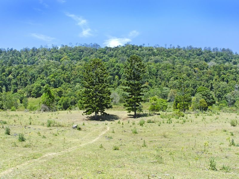 Lot 2 - 321 Flying Fox Rd, Flying Fox, Qld 4275