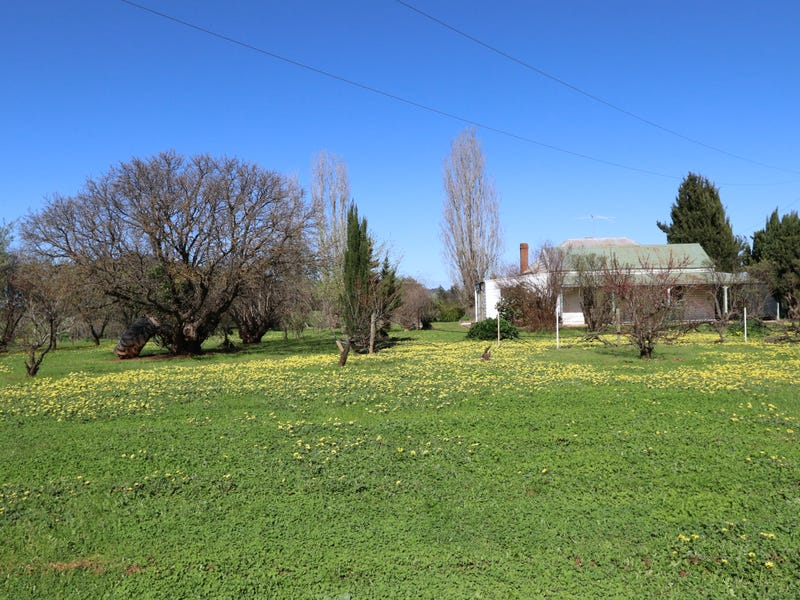 ". ""Tall Acres"", Young, NSW 2594"