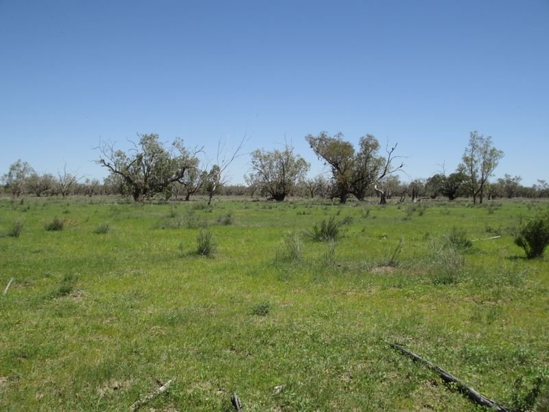 Address available on request, Morven, Qld 4468