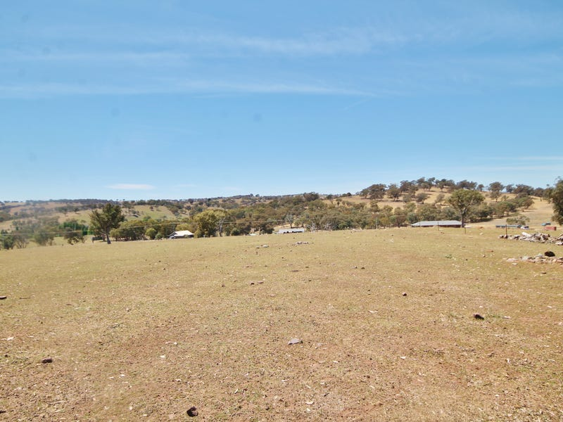 79 Dowling Drive Murringo via, Young, NSW 2594