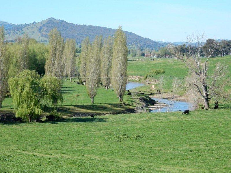 Etham Park - 511 Ellerslie Road, Adelong, NSW 2729