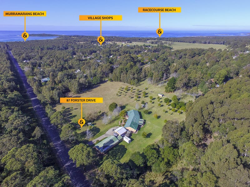 87 Forster Drive, Bawley Point, NSW 2539
