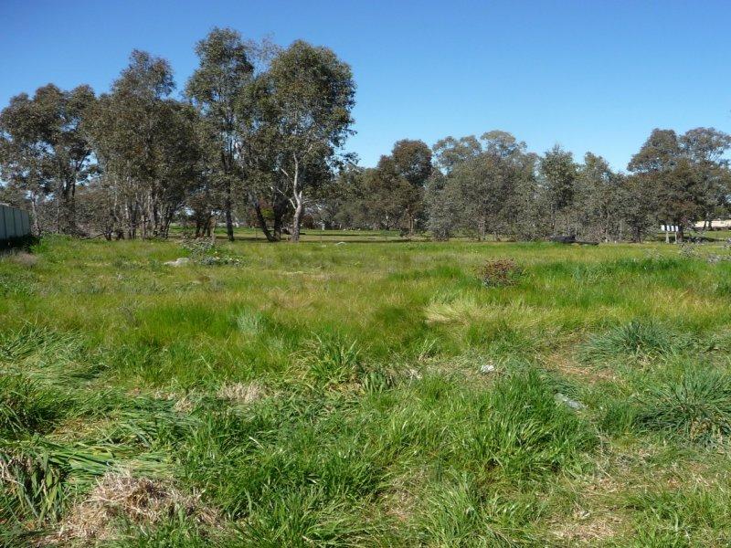 11 Ann Drive, Jindera, NSW 2642