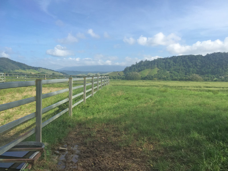 Address available on request, Upper Daintree, Qld 4873