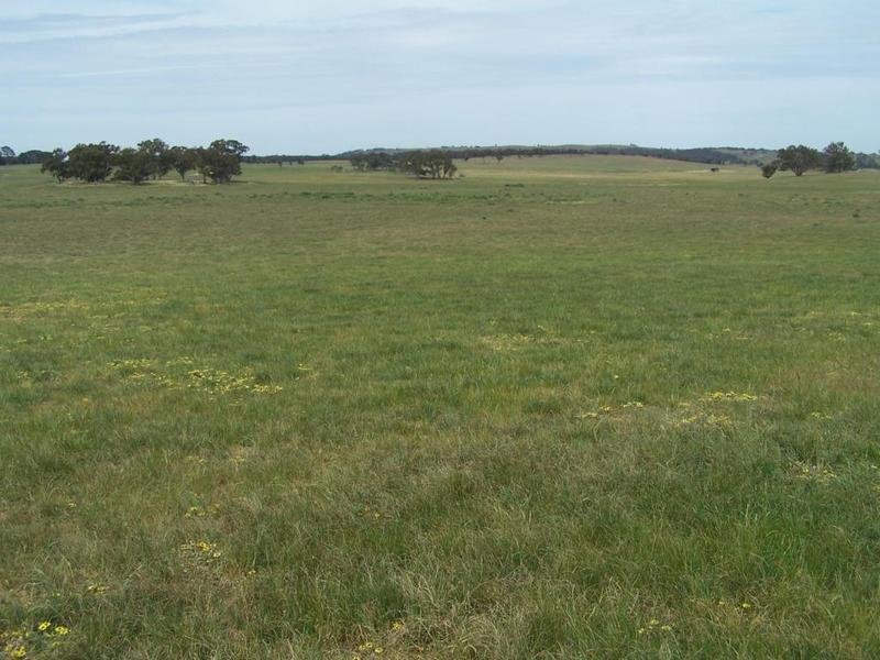 Lot 1 Bannister Lane, Gurrundah, NSW 2581