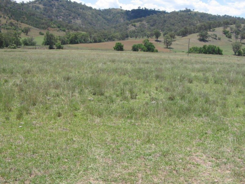 Address available on request, Garthowen, NSW 2345