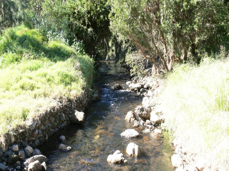 0 England Creek Road, England Creek, Qld 4306