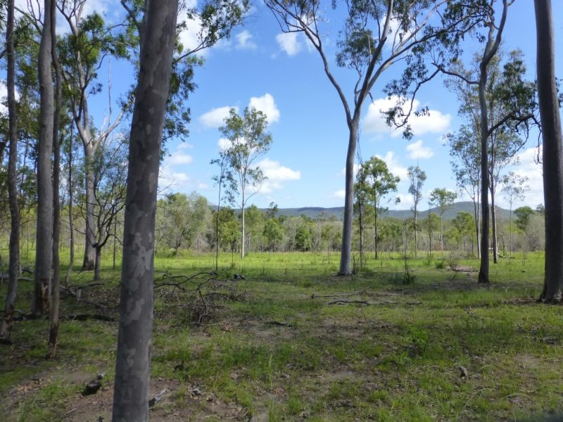 Address available on request, Abbotsford, Qld 4670