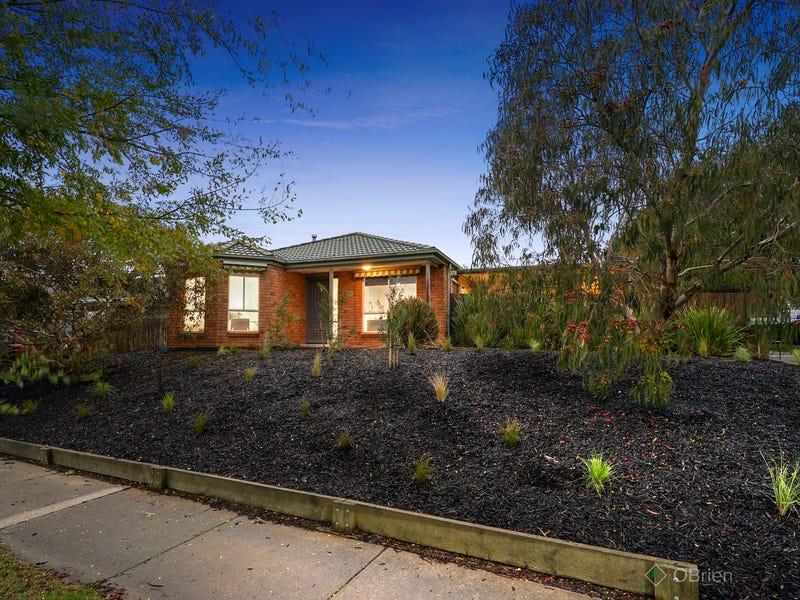 20 Lake View Drive, Narre Warren South, Vic 3805