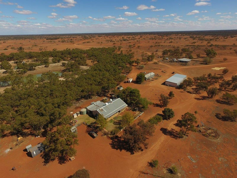 Rosewood Station, Wilcannia, NSW 2836