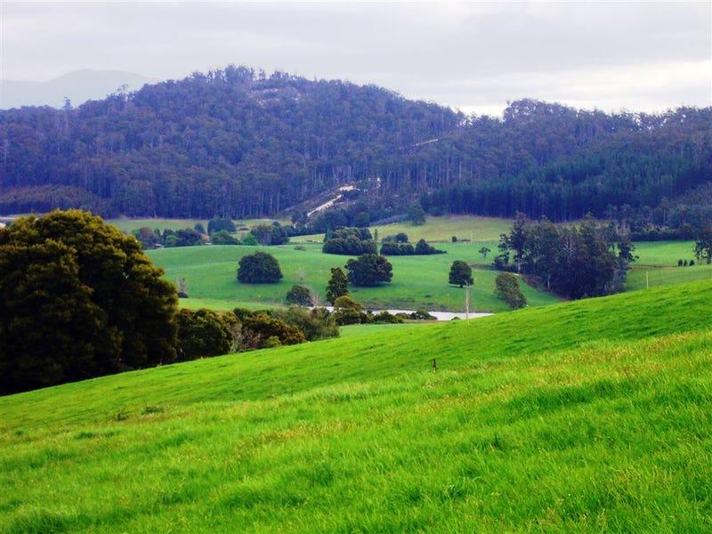 33842 Tasman Highway, Tulendeena