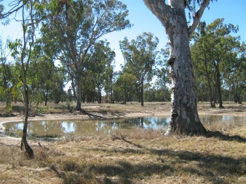 Address available on request, Ducklo, Qld 4405