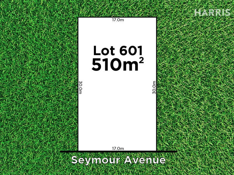 Lot 601 Seymour Avenue, Evanston Gardens