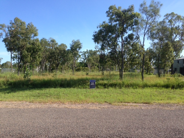 38 Blackview Road, Black River, Qld 4818