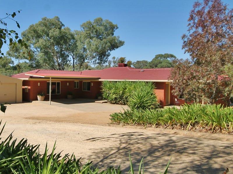 50 - 52 Petticoat Lane, Young, NSW 2594