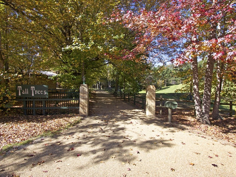1227 Tallebudgera Creek Road, Tallebudgera Valley