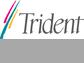 Trident Property Management